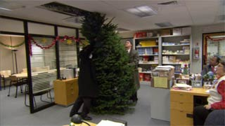 Michael gets a Christmas tree